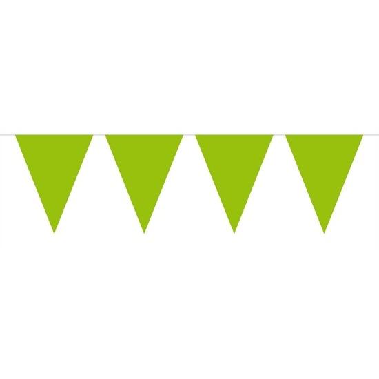 1x Mini vlaggenlijn-slinger lime groen 300 cm