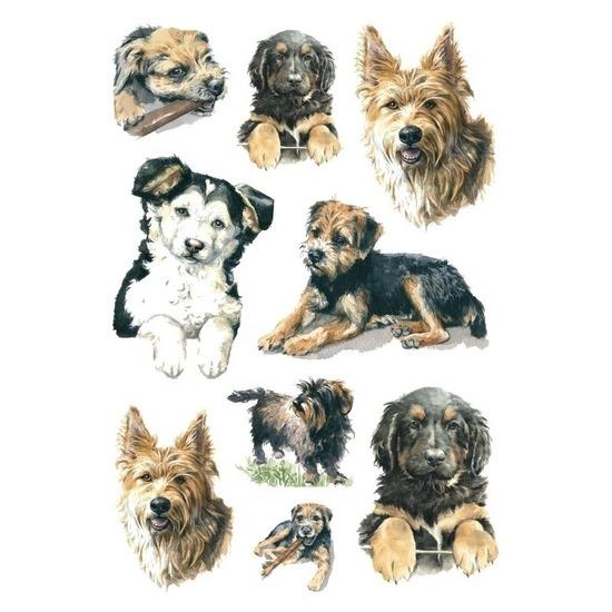 27x Honden-puppy dieren stickers
