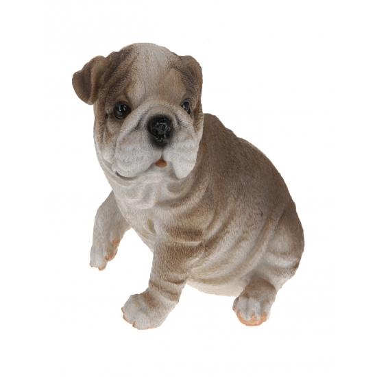 Bulldog beeldje zittend 13,5 cm type 3
