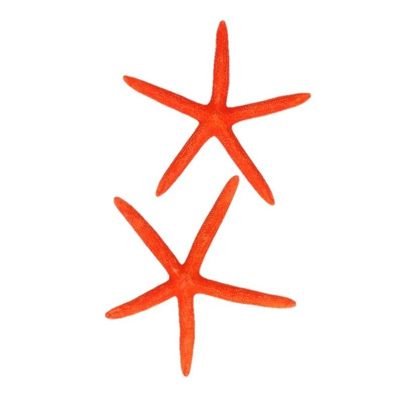 Decoratieve zeesterren oranje
