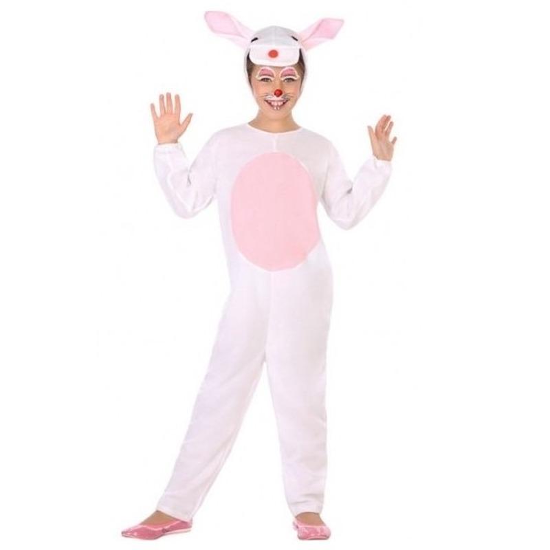 Dierenpak konijn-haas verkleed kostuum voor kinderen