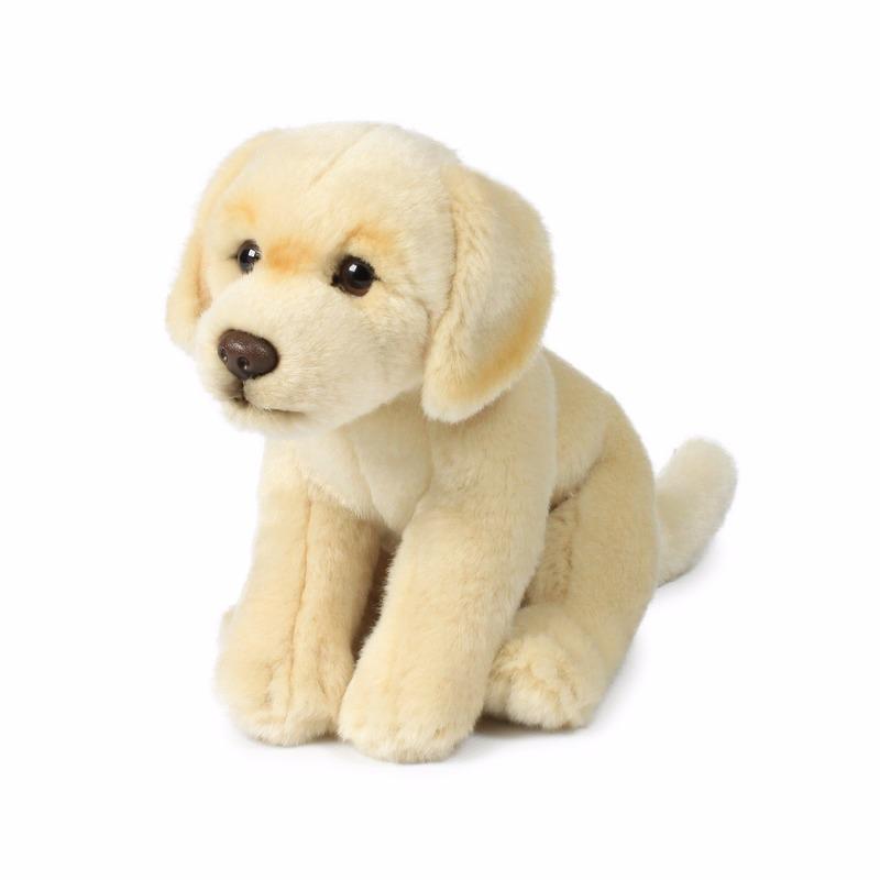 Honden knuffels labrador 20 cm