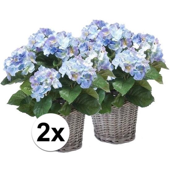Kantoor decoratie Hortensia blauw 45 cm 2 stuks