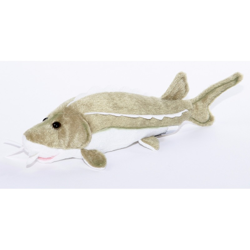 Pluche steur vissen knuffel 25 cm